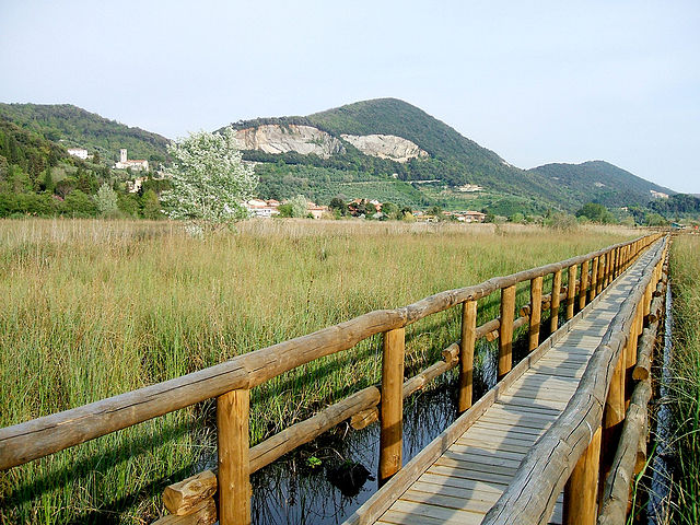 640px-Palude_Massaciuccoli.jpg